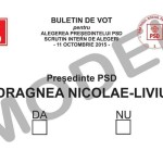 PSD își alege conducătorul iubit: Alegeri interne cu xeroxul la ușă
