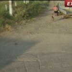 România Tv: Bătrân cu handicap lovit de mașină, la Măriuța / Video